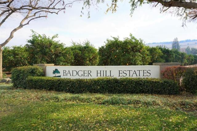 434 W High Sierra Drive, Exeter, CA 93221 (#502072) :: FresYes Realty