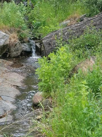 0 Shany Creek Road, Ahwahnee, CA 93601 (#503714) :: FresYes Realty