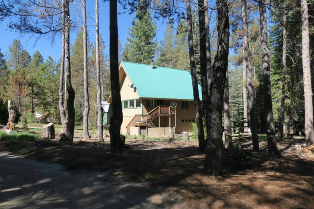 58744 Shuteye Road, Bass Lake, CA 93604 (#504606) :: FresYes Realty