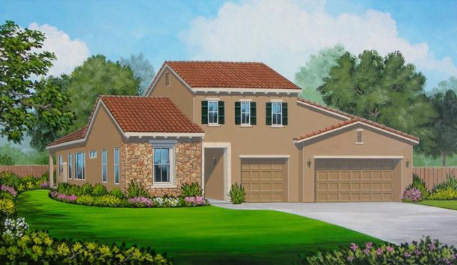 20056 Pescara Ln, Friant, CA 93626 (#504901) :: Raymer Realty Group