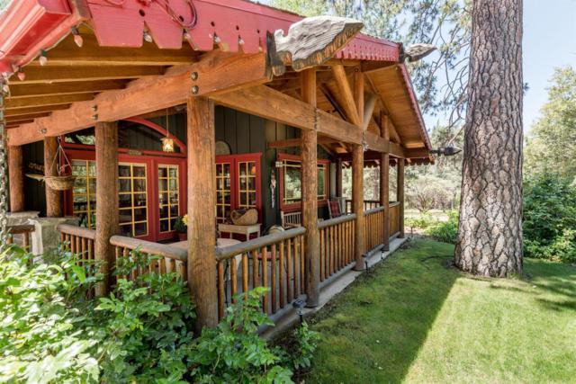 43087 Sierra Vista Lane, Oakhurst, CA 93644 (#505059) :: Raymer Realty Group