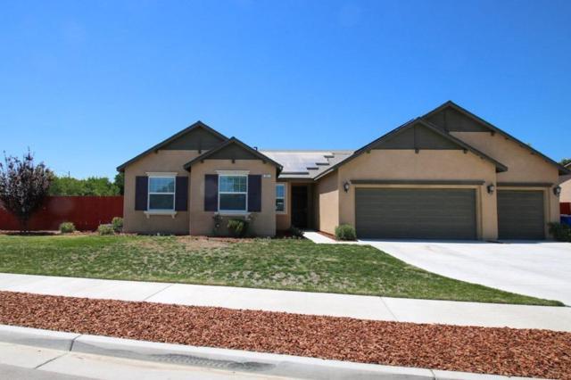 863 Legacy Drive, Lemoore, CA 93245 (#505062) :: Soledad Hernandez Group