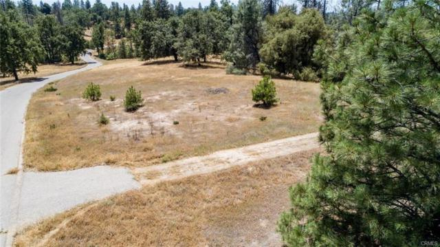 3 Hard Times Ranch Road, North Fork, CA 93643 (#505595) :: FresYes Realty