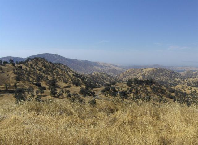 0 Raven Lane, Squaw Valley, CA 93675 (#505728) :: FresYes Realty