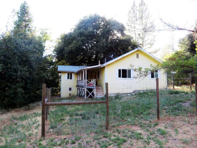 4836 Whitmore Drive, Mariposa, CA 95338 (#505809) :: FresYes Realty