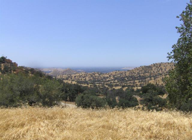 0 Raven Lane, Squaw Valley, CA 93675 (#506082) :: FresYes Realty