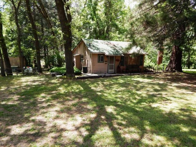 45144 Cedar Springs Road, Oakhurst, CA 93644 (#506181) :: FresYes Realty