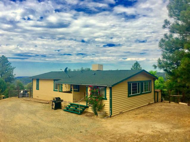 58235 Road 225, North Fork, CA 93643 (#506487) :: FresYes Realty