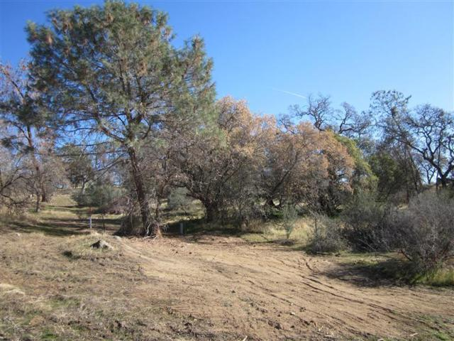 0-4.04AC Road 600, Raymond, CA 93653 (#506592) :: Soledad Hernandez Group