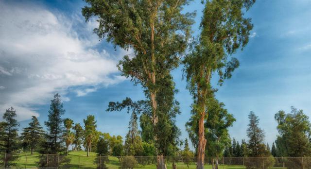 1067 E Turnberry Avenue, Fresno, CA 93730 (#506644) :: FresYes Realty