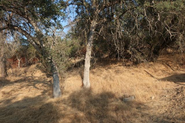 0-Lot 689 Yosemite Springs Parkway, Coarsegold, CA 93614 (#506675) :: FresYes Realty