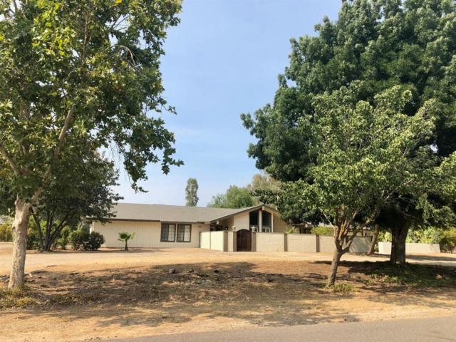5196 E International Avenue, Clovis, CA 93619 (#506676) :: FresYes Realty