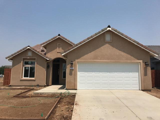 1229 Orion Drive, Merced, CA 95348 (#507642) :: Soledad Hernandez Group