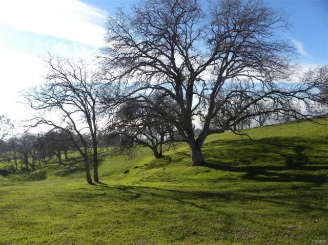 0-Lot 2 Misty Ridge Road, Raymond, CA 93653 (#509238) :: Soledad Hernandez Group
