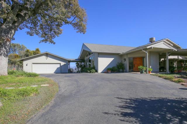 43736 Highway 49, Ahwahnee, CA 93601 (#510063) :: Soledad Hernandez Group