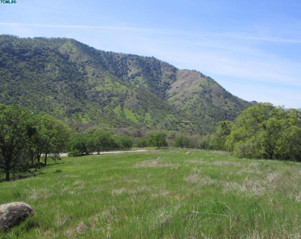 0 Buckhorn Trail, Three Rivers, CA 93271 (#510120) :: FresYes Realty