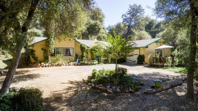 51618 Badger Ridge Lane, Oakhurst, CA 93644 (#510291) :: Soledad Hernandez Group