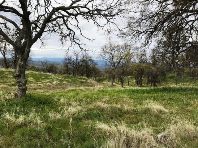 0-Lot 1507 Lilley Mountain Drive, Coarsegold, CA 93614 (#510393) :: Soledad Hernandez Group