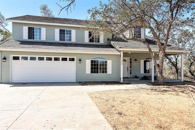 42450 Deep Forest Drive, Coarsegold, CA 93614 (#510495) :: Soledad Hernandez Group