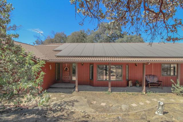 36694 Wells Road, Coarsegold, CA 93614 (#510561) :: Soledad Hernandez Group