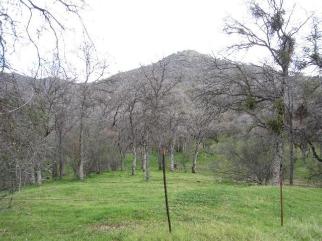 0 Address Not Published, Ahwahnee, CA 93601 (#510807) :: FresYes Realty