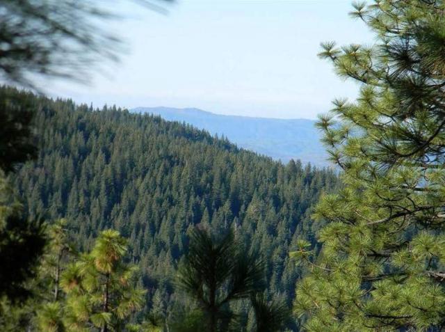 7487 Yosemite Park Way, Yosemite West, CA 95389 (#511379) :: Soledad Hernandez Group