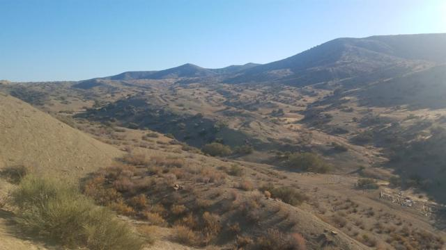 0 Little Panoche Road, Out Of Area, CA 95043 (#512161) :: Soledad Hernandez Group