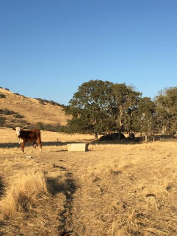 0 Hwy 180 At Ruth Hill Rd, Squaw Valley, CA 93657 (#512293) :: FresYes Realty