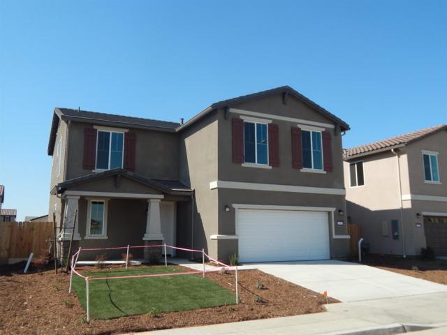 6577 E Christine (Lot 01401) Avenue, Fresno, CA 93727 (#512468) :: Soledad Hernandez Group
