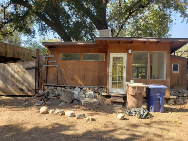 42403 Sierra Drive, Three Rivers, CA 93271 (#512577) :: FresYes Realty