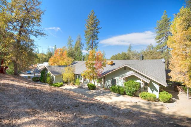 45874 Forest Ridge Drive, Ahwahnee, CA 93601 (#512785) :: FresYes Realty