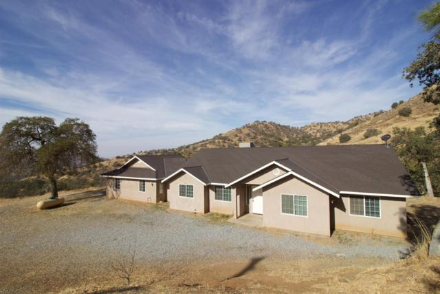 39453 Pepperweed Road, Squaw Valley, CA 93675 (#513168) :: FresYes Realty
