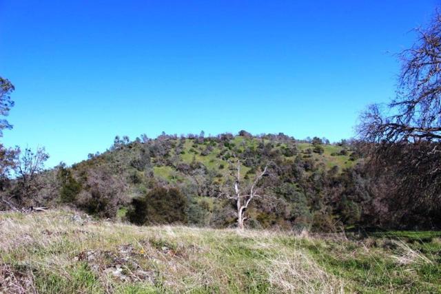 5454 Pearce Ranch Road, Mariposa, CA 95338 (#513187) :: FresYes Realty