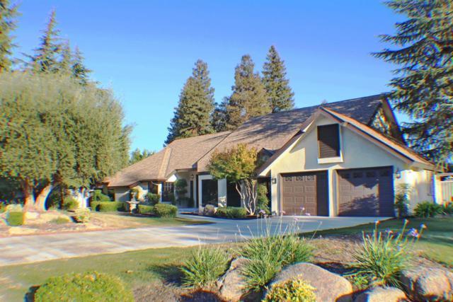 439 W Audubon Drive, Fresno, CA 93711 (#513375) :: Raymer Realty Group