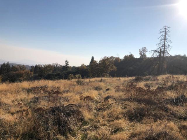 0 New Mckenzie Ridge Road, Dunlap, CA 93621 (#513527) :: FresYes Realty