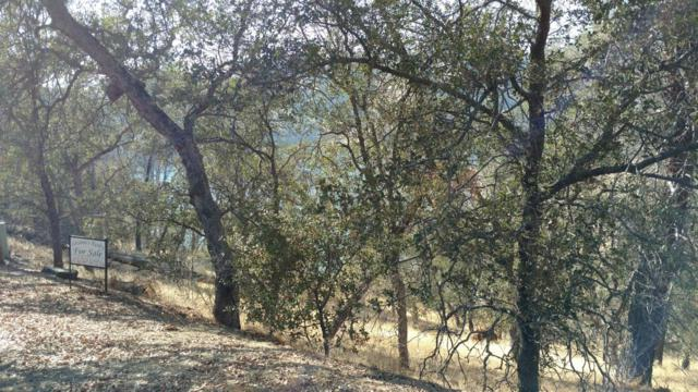 27551 Sky Harbour Road, Friant, CA 93626 (#514454) :: Raymer Realty Group