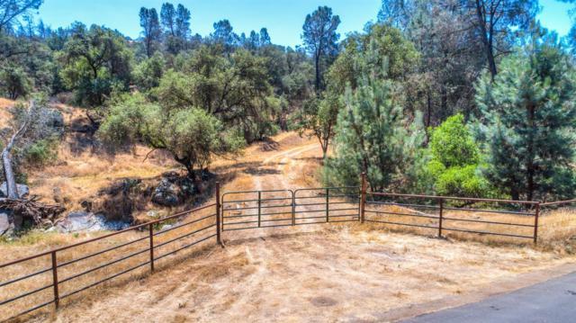0 Road 800, Bailey Flats, Raymond, CA 93653 (#515079) :: Soledad Hernandez Group