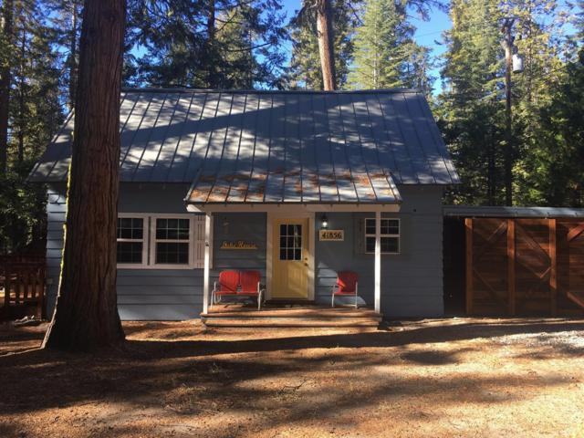 41856 Elderberry, Shaver Lake, CA 93664 (#515364) :: Raymer Realty Group
