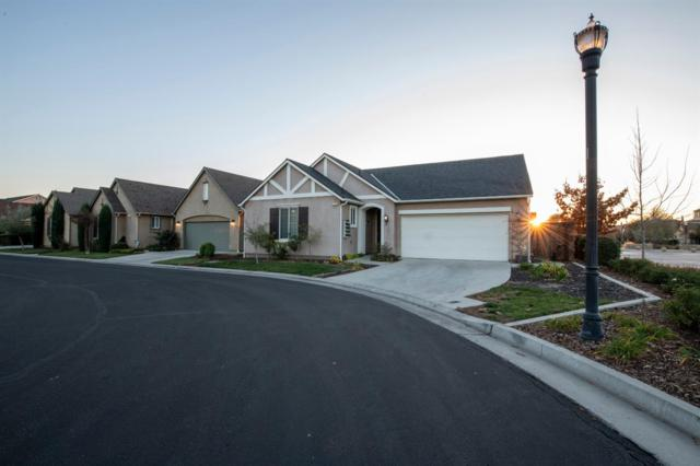 1776 N Mcpherson Lane, Clovis, CA 93619 (#515550) :: Raymer Realty Group