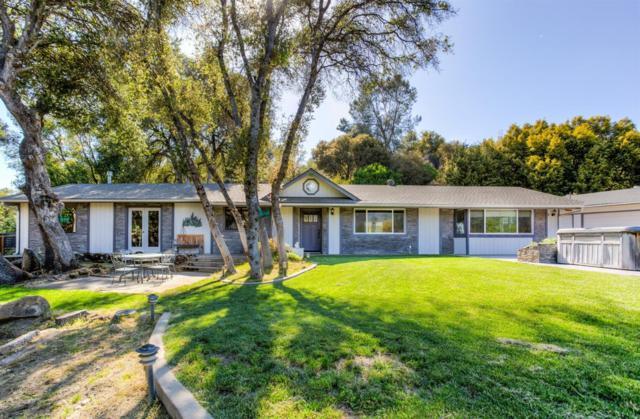 50066 Leaning Pine Lane, Oakhurst, CA 93614 (#515597) :: Raymer Realty Group