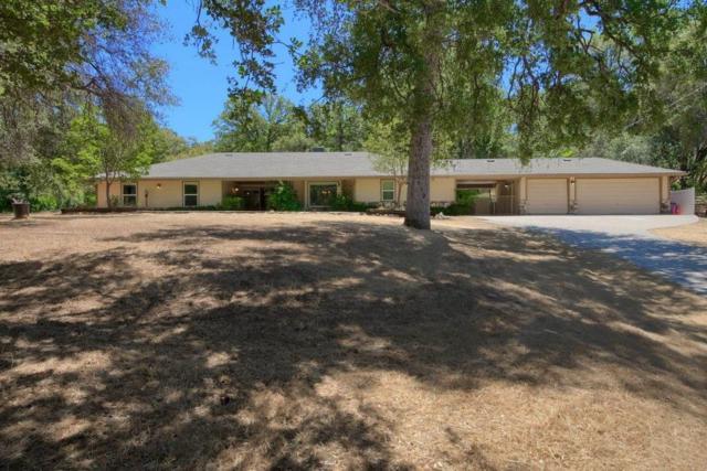 4902 Hidden Springs Road, Mariposa, CA 95338 (#515665) :: Soledad Hernandez Group