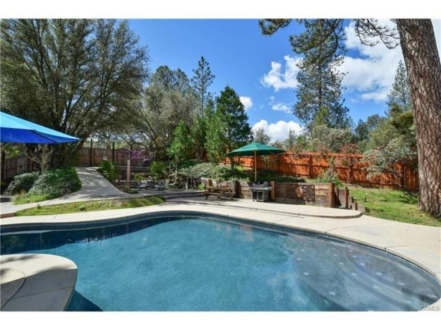 49649 Meadowwood Road, Oakhurst, CA 93644 (#515946) :: Raymer Realty Group
