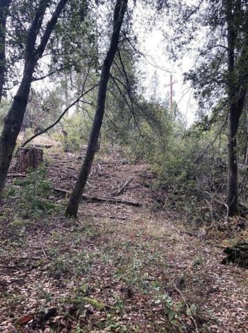 5659 Pilot Peak Road, Mariposa, CA 95338 (#516402) :: Soledad Hernandez Group