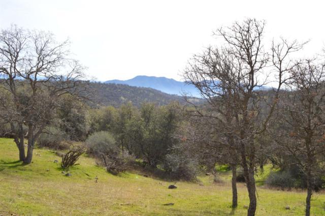0 Orchard Drive, Miramonte, CA 93641 (#516866) :: Soledad Hernandez Group