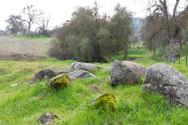 0 Sand Creek Road, Squaw Valley, CA 93675 (#516879) :: Soledad Hernandez Group