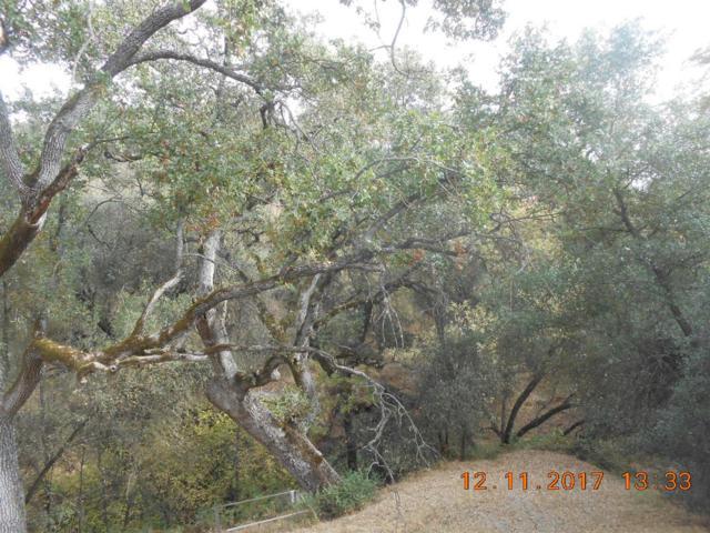 0 Chuckwagon, Squaw Valley, CA 93675 (#517432) :: Soledad Hernandez Group