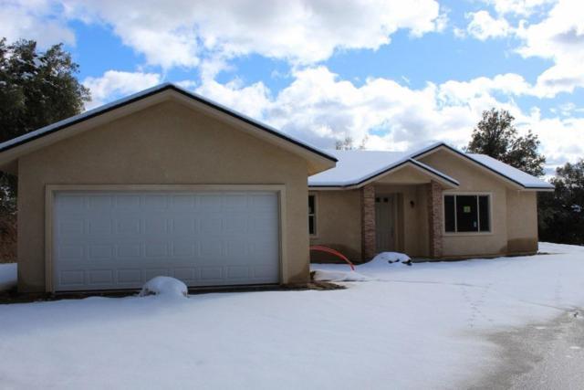 50820 Highland View Lane, Oakhurst, CA 93644 (#517449) :: Soledad Hernandez Group