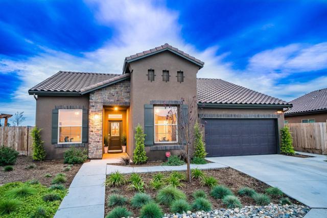 6719 E Truman Avenue, Fresno, CA 93727 (#517707) :: Soledad Hernandez Group