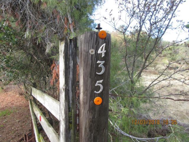 435 Drake Lane, Squaw Valley, CA 93675 (#517861) :: Soledad Hernandez Group