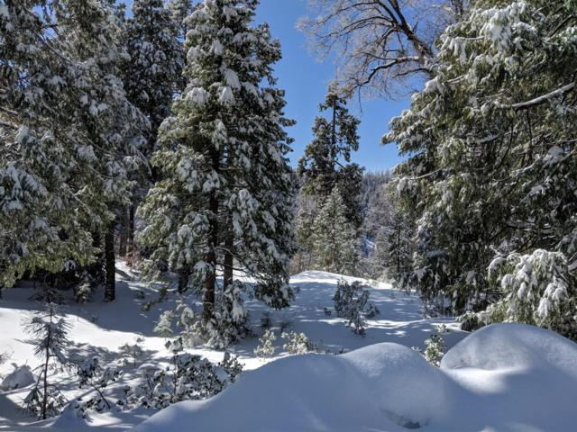0 Crest Point, Shaver Lake, CA 93664 (#518535) :: Raymer Realty Group